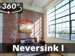 Neversink I